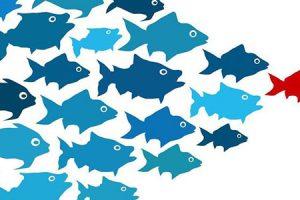 Belirsiz Durumlarda Kendine Güvenen Bir Yönetici Olmak